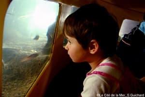 Un enfant observe les poissons par un hublot