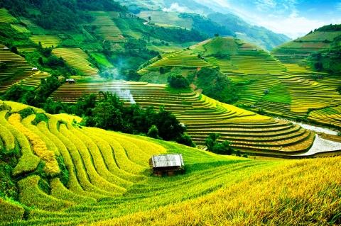 voyage vietnam sapa